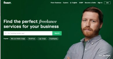 Find-the-Perfect-Freelancer-Fiverr and best review of fiverr